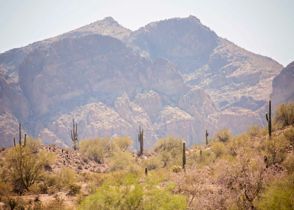 Arizona, A New Frontier: Day 1