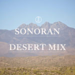 MIXTAPE // 008 Sonoran Desert Mix