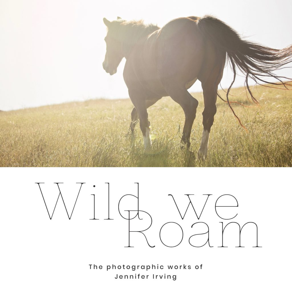 Mixtape // 010 Wild We Roam Gallery