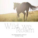 Mixtape // 010 Wild We Roam Gallery