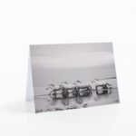 The Camargue Collection Notecards are Here!